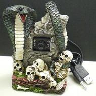 Skull Web Camera