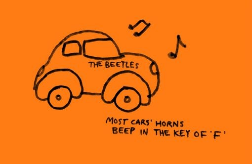Beetle-Cars-Illustrations