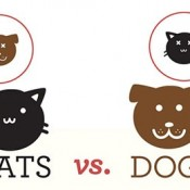 catsvsdogs_infographic_thumb