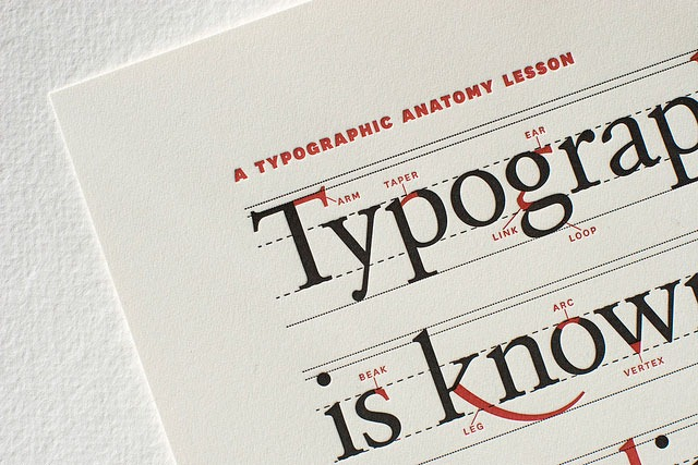 a typographic anatomy lesson limited edition print