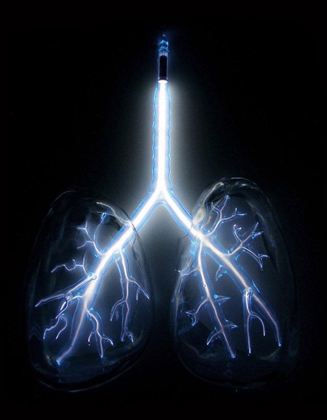 Electric-Lungs-Jessica-Lloyd-Jones