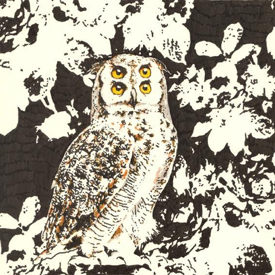 Joao-MT-Illustrations-6