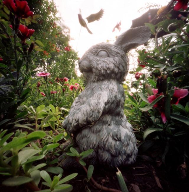Bunny-and-Bird,-My-Nana's-Garden