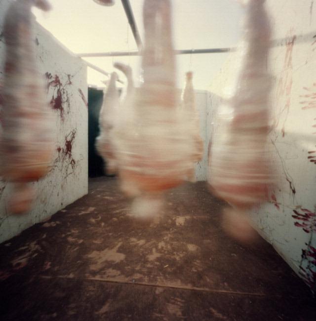Mummies,-Fear-Farm-Haunted-House