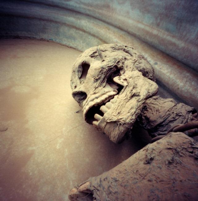 Skeleton,--Fear-Farm-Haunted-House