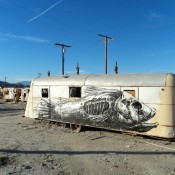 ROA-The-Salton-Sea-California_u_1000_thumb