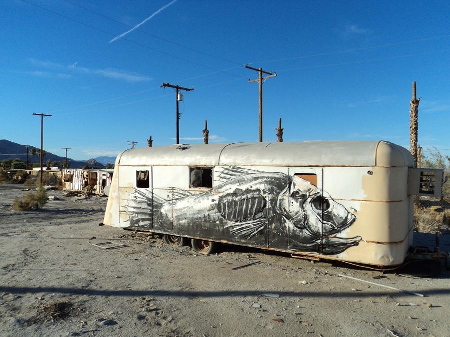 ROA-The-Salton-Sea-California_u_1000