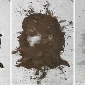 Ephemeral Che Street Art Made With Mud