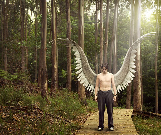 We-all-have-the-tools-to-fly,-just-imagine-you-can