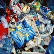 Stephane Dillies's Garbage Art