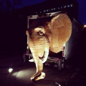The Elephant in the Truck