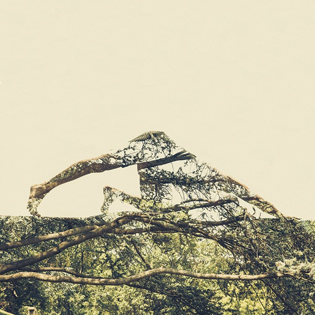 Micheal-Synder-Breathing-Life-Double-Exposure-Photo-Project-Hawah16