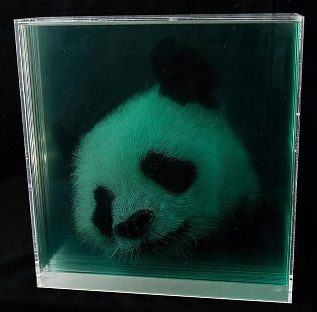 Panda-Holographic-Paintings-of-Animal-Heads-by-Yosman-Botero