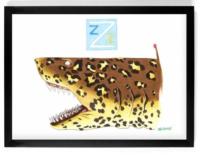 Jaquar-Shark-The-Life-Aquatic-with-Steve-Zissou-Illustration-by-Ryan-Berkley.jpg