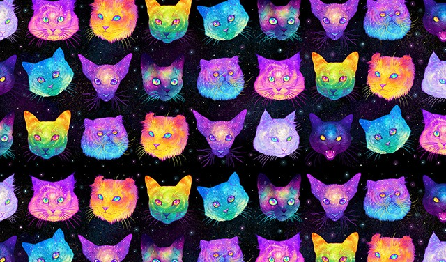 Galactic-Cats-Illustrations-by-Jen-Bartel