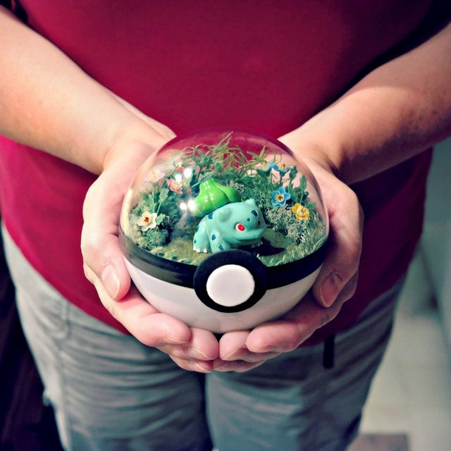 poke_ball_terrarium___bulbasaur___medium_by_the_vintage_realm-daifsen