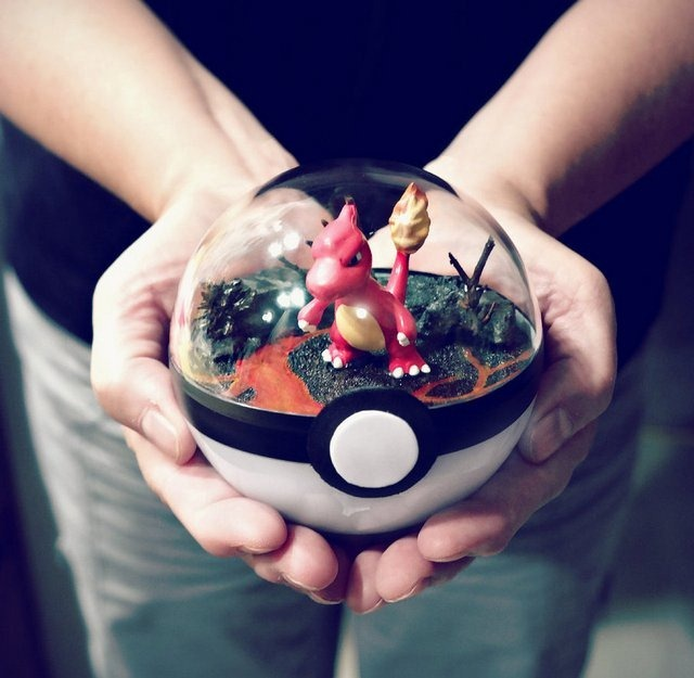 poke_ball_terrarium___charmeleon___medium_by_the_vintage_realm-dai8jnw