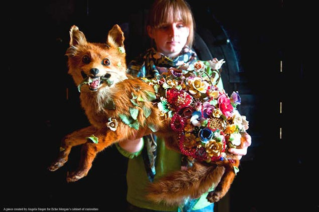 The Taxidermy Art of Angela Singer