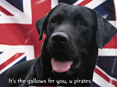 Dogs against Piracy