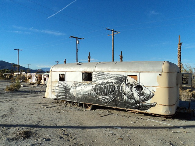 ROA-The-Salton-Sea-California_u_1000