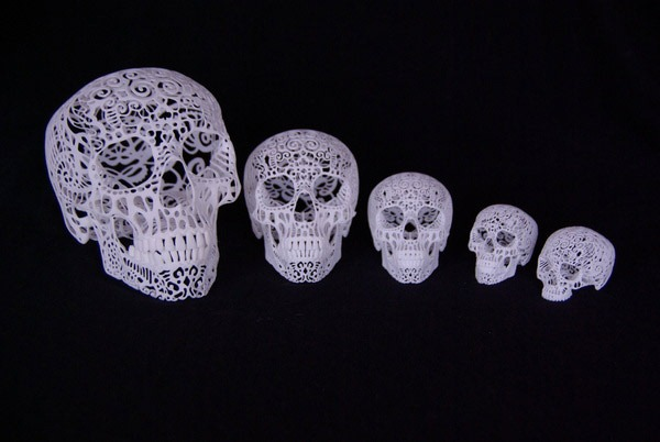 Joshua-Harker-Crania-Anatomica-Filigre-05