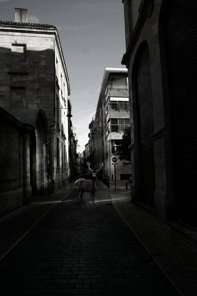 Pisaller-Double-Exposure-Photography-008