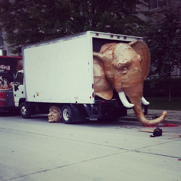 Laurence-Vallieres-Cardboard Elephant-02