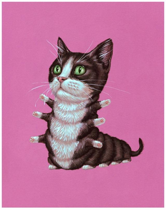 Tuxedo-Cat-by-Casey-Weldon