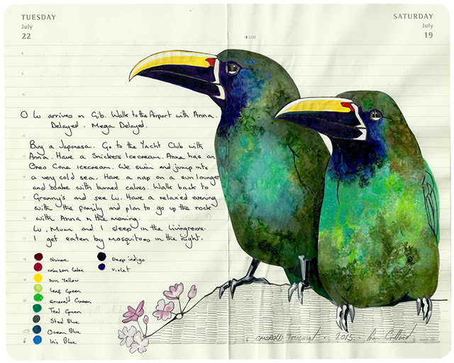 All-My-Beautiful-Boys-Ornithological-Drawings-by-Fran-Giffard-Emerald-Toucanet