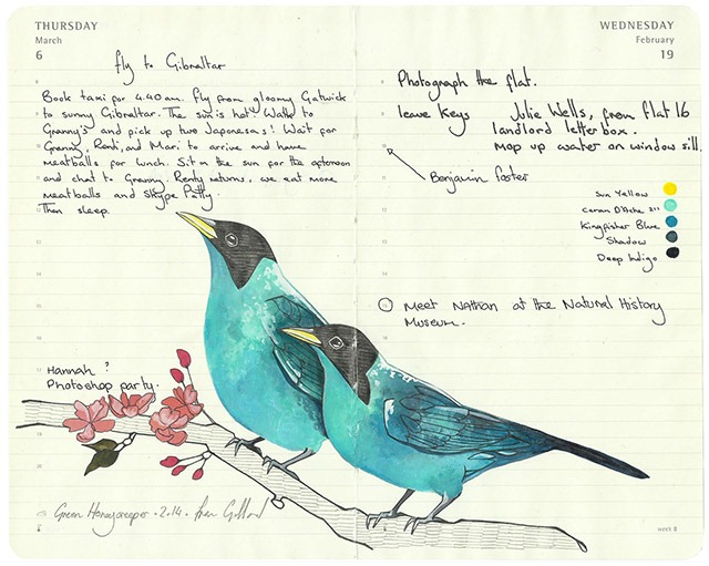 Remarkable Illustrations of Birds Drawn in Moleskine Diaries