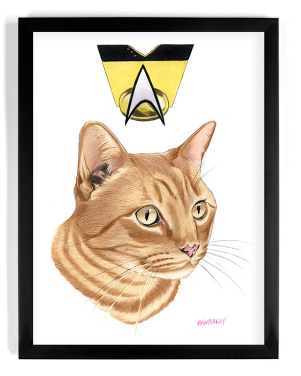 Spot-Star-Trek-The-Next-Generation-Illustration-by-Ryan-Berkley.jpg