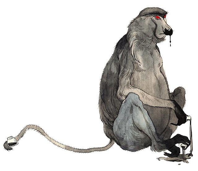 Asya-Lisina-Monkey