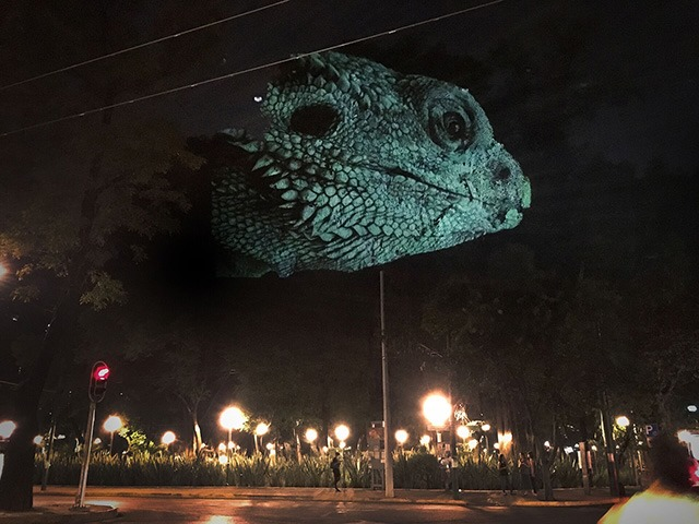 ANIMAL-WATCHING---Video-installation-on-trees-in-Mexico-Revista-Marvin-05