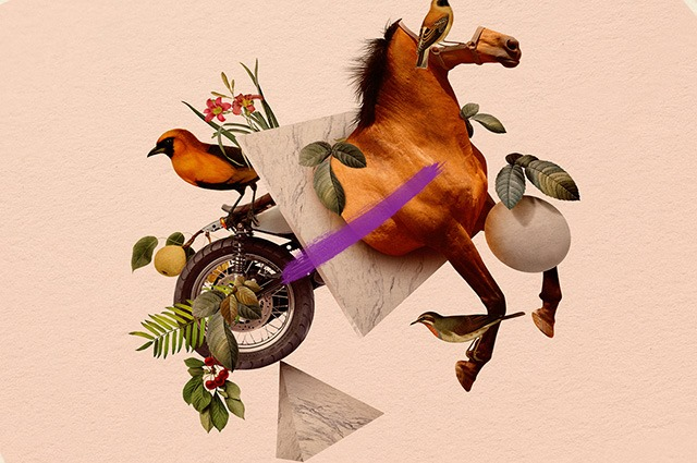 Caballo-Bayo-Digital-Art-Collages-by-Orbeh-Studio