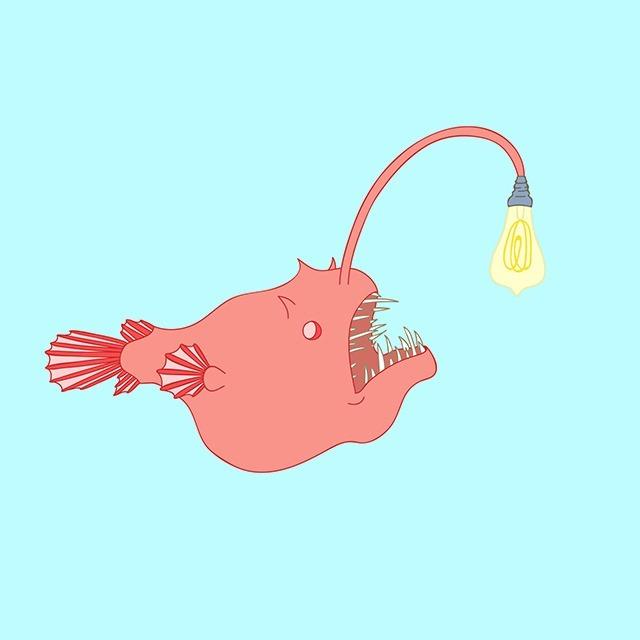Jasmine Echols Graphic Design Illustrations Angler-Fish