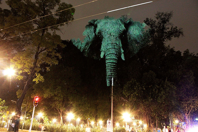 Sensational Art Installation of Wildlife Projected on Trees